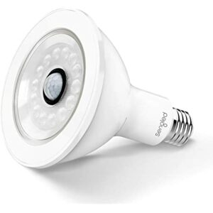 Sengled Motion Sensor Outdoor Light