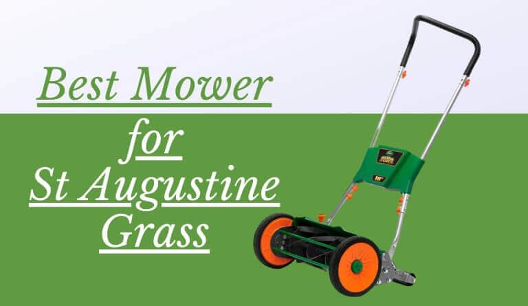 Best Mower for St Augustine Grass